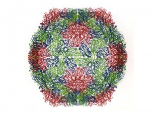 Atomic structure of the entire  virus particle of SBMV shown with computer graphics. Each subunit is shown as the Carbon alpha tracing in different colors to depict the different geometric environment within the icosahedral shell.